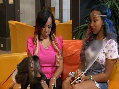 2. Tiny wants a monkey